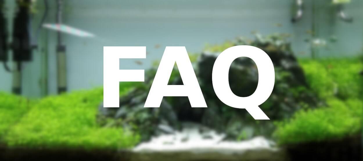 FAQ – Kurz und knapp